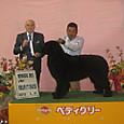 2013.511 和歌山県クラブ連合会展