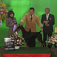 2012.12.9 北九州リターンズ愛犬クラブ展